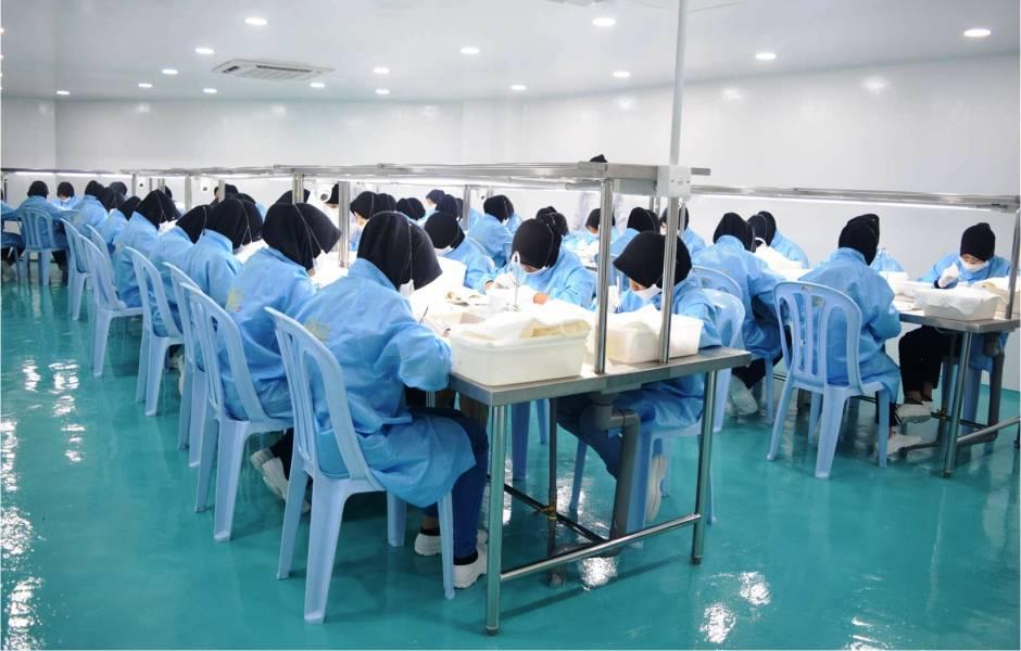 马来西亚燕窝加工厂