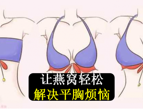 鲜奶炖燕-小小燕窝, 帮你轻松解决平胸烦恼!